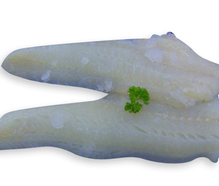 haddock_fillets